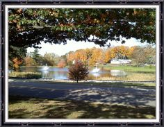A lovely fall day in Storrs