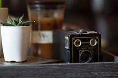 Una foto di Dustin Abbot scattata con #Laowa 105mm #Soft-Trans-Focus