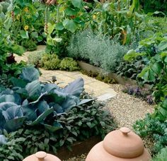 This kitchen garden is laid out in a formal style with neat brick paving and mixed plantings of vegetables, herbs and flowers.