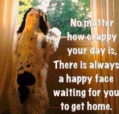 <3 It's true. #DogMom #DogDad #AdoptDontShop #DogLover #LoveDogs #RescueDog #ShelterDog #Love