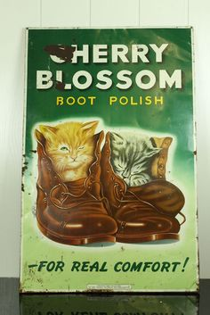 Advertising sign - boot polish - 1950s cats