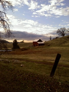 Placerville, California. Took this with my moto razr by my parents house.