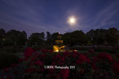 Moonlit Roses - This fountain is located in center of the rose garden at the Memphis Botanic Gardens; In this picture I used a 90 second exposure, there is no artificial light behind the camera, all the light in the picture comes from the fountains under water bulbs and the full moon. Taken shortly after dark.
