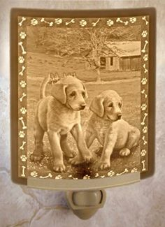 Puppies - Curved Lithophane Porcelain Night Light *** Check out the image by visiting the link.
