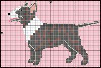 Bullterrier (tigrerad)