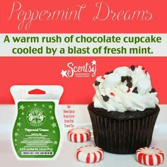 Scentsy Peppermint Dreams scent! #favoritescent  http://KendraSheets.Scentsy.us