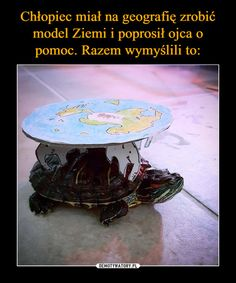 Disc world cosplay turtle Very Funny Memes, Wtf Funny, Hilarious, Funny Mems, Nerd Humor, I Love Anime, Science And Nature, Funny Comics, Best Memes