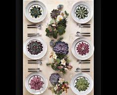 Cactus series plates by @azarraluqui #azarraluqui