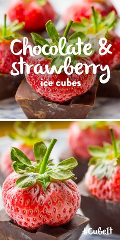 Chocolate & strawberry ice cubes. TIP – Enjoy with fresh cream and meringue. 1) Add dark chocolate to a saucepan and melt on a low heat. 2) Fill your ice cube tray so each cup is 2 / 3 full with the melted chocolate. 3) Press your strawberries into the chocolate sauce so   the stalks poke out from the top. 4) Freeze for 1 hour. ***** Want to win a Samsung Food ShowCase Fridge Freezer? Check out our #CubeIt competition and #PinToWin! go.currys.co.uk/iwJE0n *****