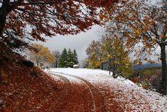 Monte Bondone - Trentino - © Carmen Buffa - our Facebook fan  http://www.visittrentino.it/it/cosa_fare/da_vedere/dettagli/dett/da-vedere-monte-bondone