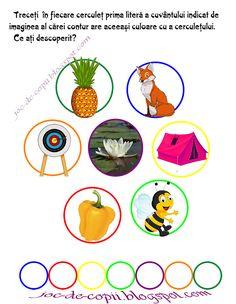 Alphabet, It Works, Letters, Education, School, Plant, Alpha Bet, Letter, Lettering