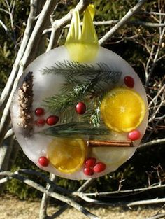 A new Cindy's Corner was just released with a fun activity - make your own Winter Sun Catchers. Collect winter items in your yard (like pine cones and pine needles), place in a pie pin, fill with water and freeze. Hang the sun catcher outside and see the light reflect through the ice! *pinned by wonderbaby.org