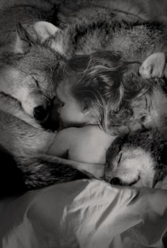 Ohhhh I cannot LOVE this photo any more than I already do!!  This will be my child one day - I wish with wolves, but it'll most likely be with dogs and that's just as good to me.