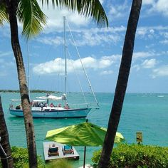 You've been waiting all this time and look!  Your ship just came in. [repost @Floridayskeywest ]#staysaltyflorida #pureflorida #loveFL #keywest #sailing #sailboat #charterboat #palmtrees #paradise #vacation #timetogo