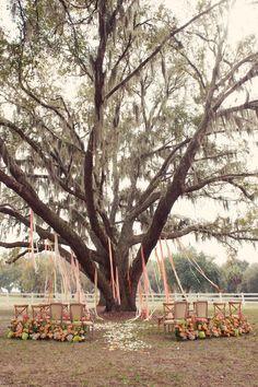 Ceremonies — Botanica