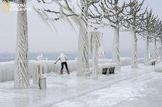 Cool Icy Sculptures