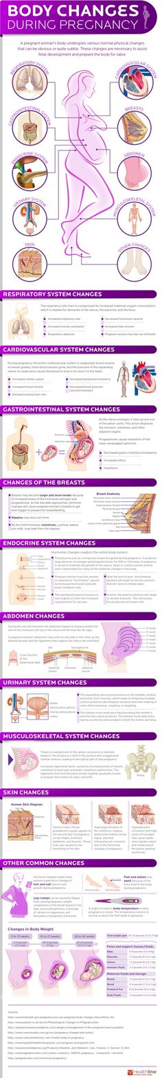 How a Woman's Body Changes During Pregnancy (Infographic). Body Changes During Pregnancy Week By Week Baby On The Way, Baby Kind, Baby Love, Pregnancy Health, Pregnancy Tips, Early Pregnancy, Pregnancy Anatomy, Stages Of Pregnancy, Pregnancy Chart