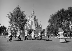 seven dwarfs- Magic Kingdom