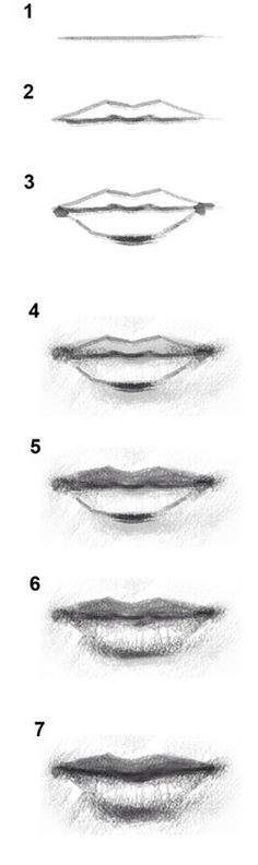 I think this'll help me draw lips. I had trouble a while ago, but I think I've figured it out.
