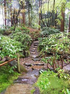 UBC Botanical Garden in Vancouver. Path with stones, photo by Jennifer C via WikiCommons