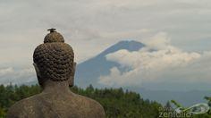 Zen found