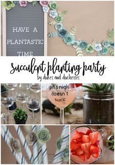 succulent planting party with punny glasses made with vinyl and a gorgeous paper succulent backdrop : succulent planting party with punny glasses made with vinyl and a gorgeous paper succulent backdrop Paper Succulents, Planting Succulents, Succulent Plants, Craft Party, Diy Party, Party Ideas, Plant Night, Housewarming Party, Party Planning