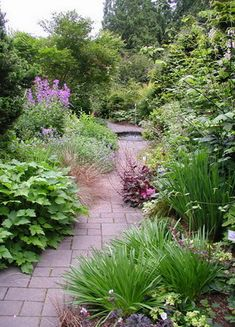 Nw Gardens On Pinterest Pacific Northwest Garden