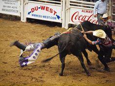 Pasadena Texas Day 2 PBR Bullriding Pasadena Livestock Show and Rodeo October 9 2010 Bull Riding Bulls Cowboys Bullfighters Bullrider Riders Cowboys Fighting Bullfighters Riding by mrchriscornwell, via Flickr