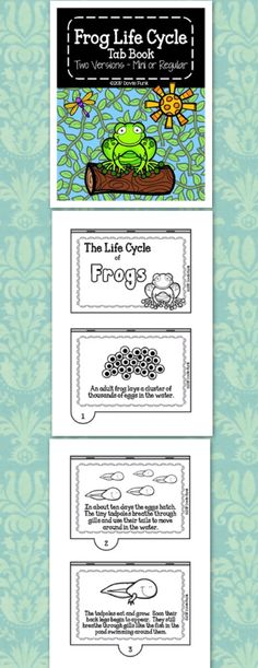 Life Cycle of Frogs Tab Book - Metamorphosis