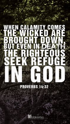 When calamity comes, the wicked are brought down, but even in death the righteous seek refuge in God. Bible Verses About Love, Bible Verse Art, Favorite Bible Verses, Bible Verses Quotes, Bible Scriptures, Proverbs 14, Book Of Proverbs, Jesus Paid It All, Spiritual Wisdom