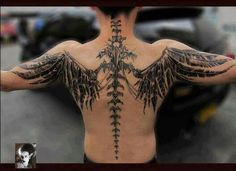 Interesting take of showing the spine and different wings