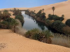 Labo Photo, Beautiful World, Beautiful Places, Paraiso Natural, Desert Photography, Breath Of The Wild, Wonders Of The World, Places To Visit, Scenery