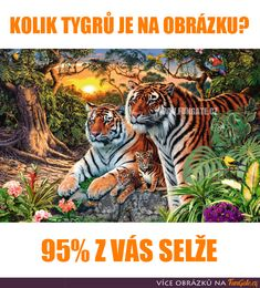ZOOYA Diamond Painting Animal Tiger Diamond Embroidery Craft DIY Home Decoration Diamond Embroidery Picture Mosaic Pattern Price history. Funny English Jokes, Best Funny Jokes, Ravensburger Puzzle, Girl Drawing Sketches, Art Drawings Sketches Simple, Cross Paintings, Animal Paintings, Sewing Crafts, Diy Crafts