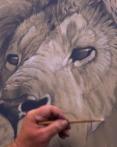 Here's the newest teaser for the lion king…er I mean lion masterpiece demo with Aaron Blaise - Drawing a Lion Animal Sketches, Art Sketches, Art Drawings, Pencil Drawings Of Animals, Lion Painting, Painting & Drawing, Lion King Drawings, Art And Illustration, Lion Art