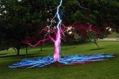 Funny pictures about Lightning Hits A Tree. Oh, and cool pics about Lightning Hits A Tree. Also, Lightning Hits A Tree photos. Lightning Strikes, Lightning Bolt, Cool Pictures, Cool Photos, Beautiful Pictures, Random Pictures, Interesting Photos, Funny Photos, Fuerza Natural