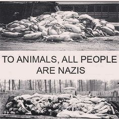 Genocide is genocide regardless of species. There will come a day when we will look back at th animal industry with disbelief & disgust. Lets make it happen sooner than later.