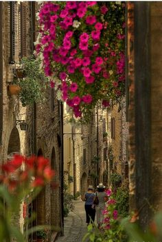 Narrow street, Umbria, Italy