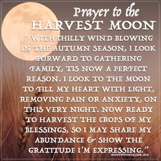 Wishing you all the warmest wishes under this September Harvest Moon in Pisces & Lunar Eclipse! Time to dive deep into your soul & make peace with old scars. Emotional Energy may be high at this time, but remember that you have the power to heal from your past. Use this Full Moon to set your worries free! www.whitewitchparlour.com fullmoon, moon, luna, mystic, harvest, witch, wicca, prayer, blessing, autumn, enchanted, light, ritual, ceremony, magick