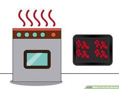 4 Ways to Dry Goji Berries - wikiHow Dried Goji Berries, Ice Baths, Cheese Cloth, Sun Dried, Raisin