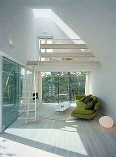 dream of big windows with raw forest outside
