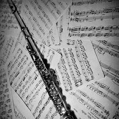 A volte mi chiedo se io sia portata per la musica. Tutti che crescono tranne io. A volte mi chiedo se io sia portata per la vita. Tutti che si divertono tranne io.  #flute #blackandwithe #sheetmusic #me #mylife #lonelyness #ineedyou #life by mar.kriss