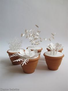 paper plants. they never wither :)