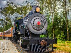 Mt. Rainier Scenic Railroad Deal - Seattle: Amazon Local