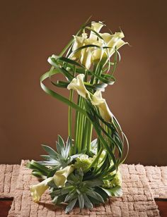 "Callas...looks like a harp - DIY ~ Natalia Mochalova firm ""Flowers on Sretenke"" - calla lilies, white carnations, Galax leaves and Echeveria"