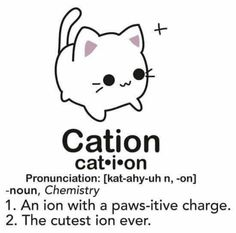 Science jokes biology puns chemistry cat Ideas for 2019 Chemistry Cat, Chemistry Shirts, Teaching Chemistry, Science Shirts, Nerd Jokes, Nerd Humor, Lab Humor, Science Puns, Science Cat