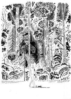 Yann Le Bec | Scoop illustration pool