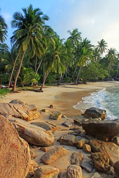 Thailand Koh Tao.I want to go see this place one day.Please check out my website thanks. www.photopix.co.nz