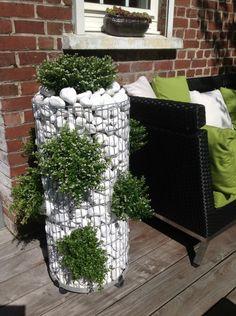 Gabion - vertical rock garden - imagining this with succulent plantings