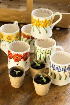 emma bridgewater mugs are the best!  Shirley, Is this the dahlia one?