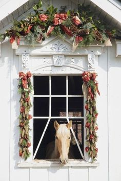 The Enchanted Home// What a barn this is!!!!! This handsome horse has a fragrant smell greeting him or her all the time, how nice of the owners to build it---if they did, but if not then they sure enjoy seeing their horse in high style.....
